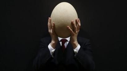 giant_elephant_bird_egg_mr3k5
