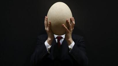 giant_elephant_bird_egg_mr3k5